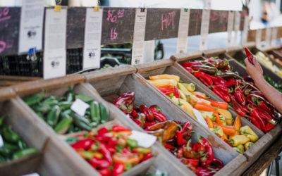 Εργαστήρια Νεοφυούς Επιχειρηματικότητας σε ΜΜΕ του τομέα της Άγρο-διατροφής